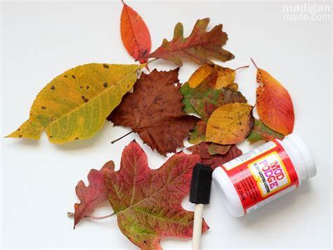 how to seal decoupage три способа сохранить листья для осеннего декора