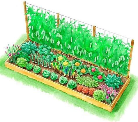 what to plant in raised vegetable garden 10 raised garden bed plans for a year vegetable garden