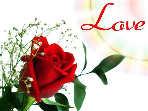 rosary from flowers wallpapers flower wallpaper cave