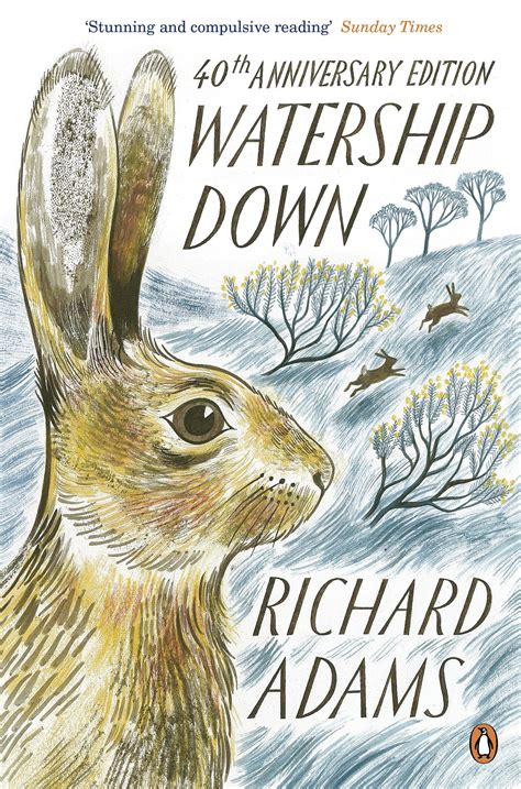 the watership picture book watership d send me 愛 d