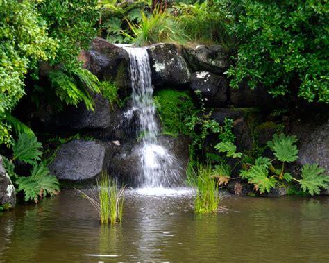 mt tomah botanic garden gardensonline gardens of the world blue mountains