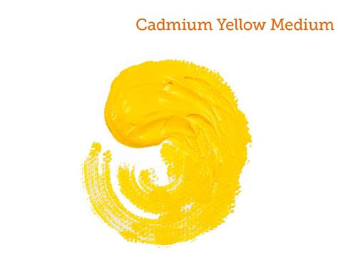 acrylic paint cadmium yellow the ultimate guide to acrylic paint colors