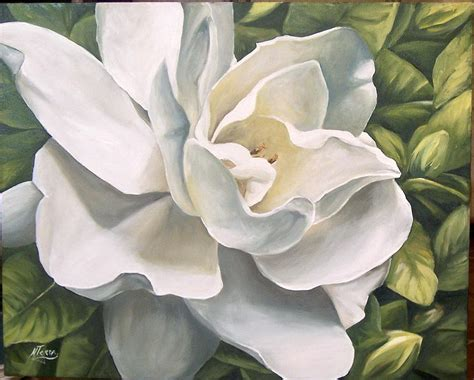 Gardenia Watercolor Tejera On Posters For Sale Print And