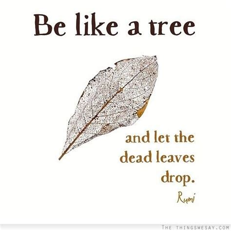 tree is up quotes top 50 spiritual quotes sayings by rumi