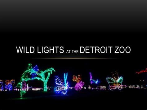 lights at the detroit zoo lights at the detroit zoo