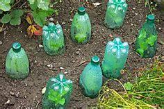 flower gardening for dummies best 25 gardening for dummies ideas on flower