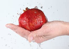 manipulador de alimentos normativa 191 por qu 233 el certificado de manipulador de alimentos