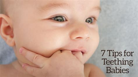 teething for babies 7 tips for teething babies dr rozas d d s dr