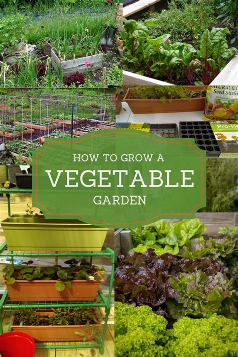 roundup vegetable garden join the buzz go about gardens 3 ways to grow a