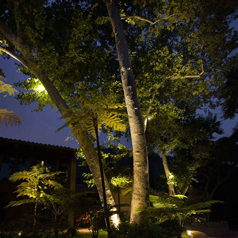 spotlight landscape lighting landscape lighting guide landscape lighting tips at