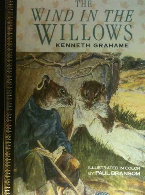 wind in the willows picture book wind in the willows children s books