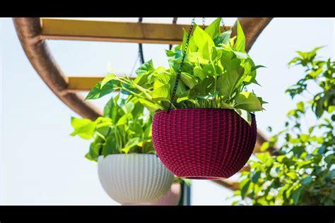 cheap plastic planters wholesale cheap plastic flower pots and planter home