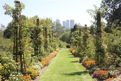 royal botanic gardens melbourne 10 top gardens in greater melbourne melbourne
