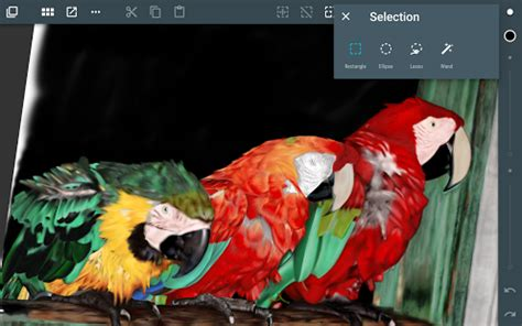 paint tool sai apk for pc artflow paint draw sketchbook android apps on play
