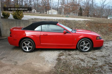 2003 Ford Mustang Cobra by 2003 Ford Mustang Svt Cobra 2 Door Convertible