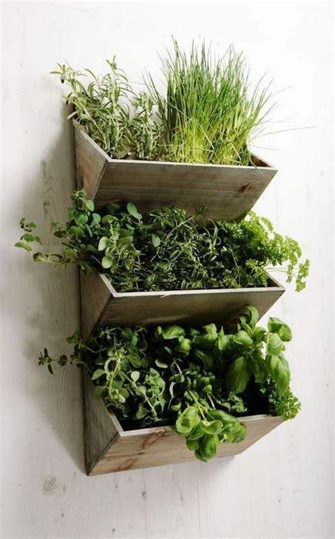 hanging wall garden 25 best ideas about herb garden indoor on