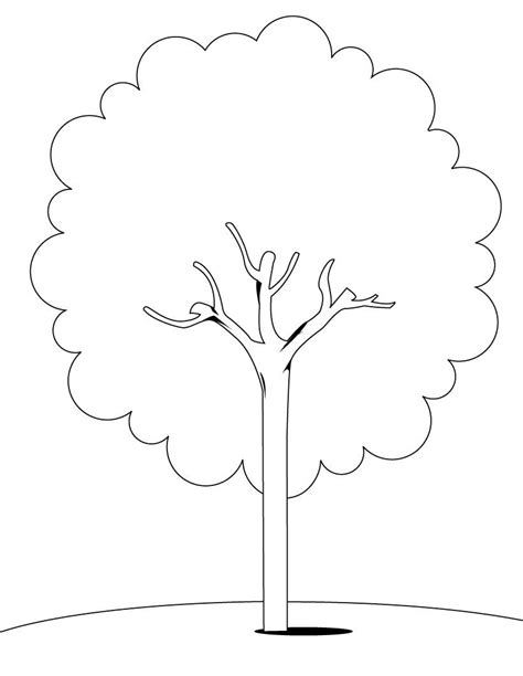 tree color in tree coloring pages coloring pages to print