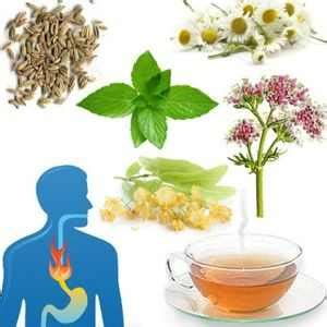 alimentos anti acidez infusiones anti acidez muy buenas para la acidez del