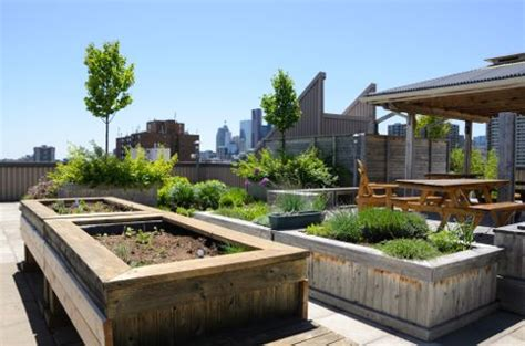 Creative DIY Green Rooftops for Renters   Greenroofs.com: Sky Gardens Blog