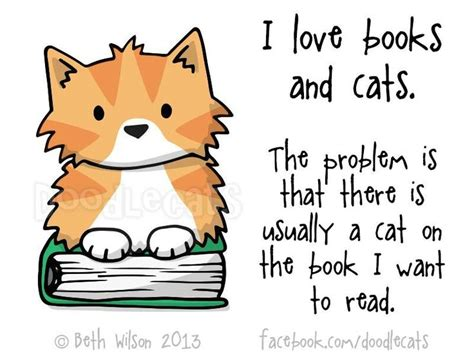 picture books about cats cats and books lovable felines