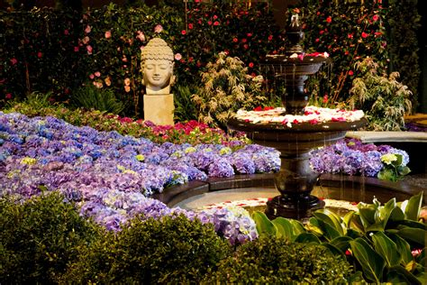 flower garden show march 2018 events calendar for things to do in chicago