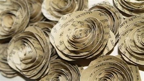 craft paper roses book graphic collection
