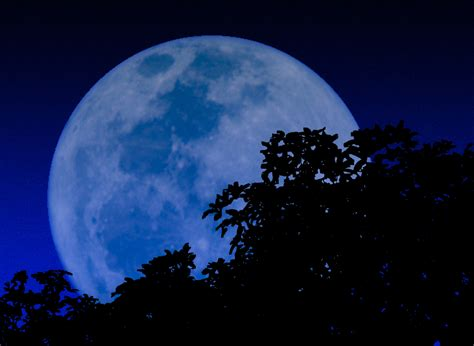 blue moon once in a blue moon orange county local council of the