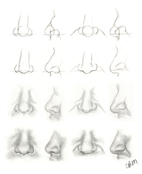 how to draw noses klaine fanart drawing tutorial nose anterior lateral