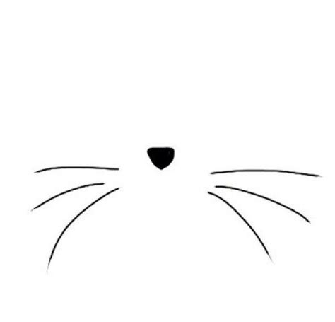cat nose and whiskers 25 best cat whiskers ideas on