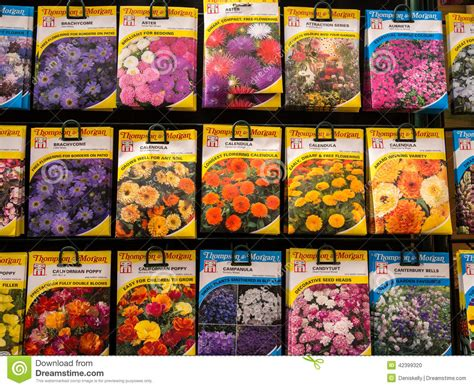 flower garden seeds flower seed packets on sale editorial image image 42399320