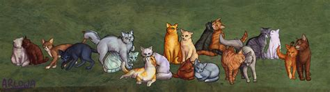 warrior cat warrior cats forever images warrior cat pairings hd