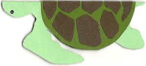 how to make a turtle out of sea turtle birthday card something sweet