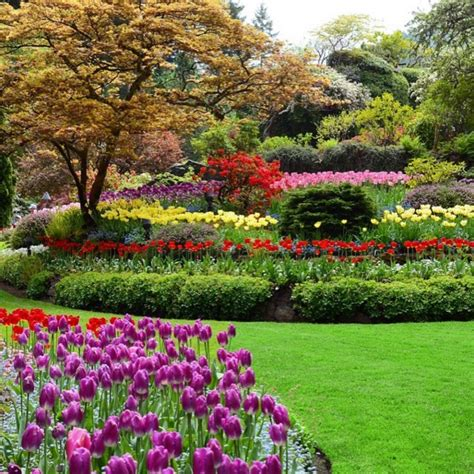 beautiful garden the most beautiful botanical gardens to visit in canada