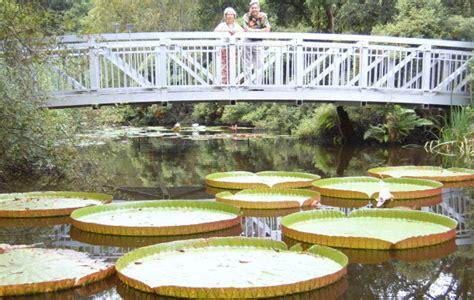 Botanical Gardens Gainesville by Kanapaha Botanical Gardens Jobs Garden Ftempo