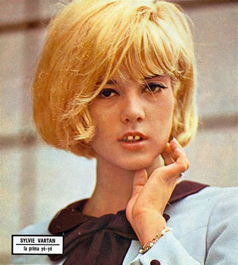 Classic Color Schemes hair style icon sylvie vartan making nice in the midwest