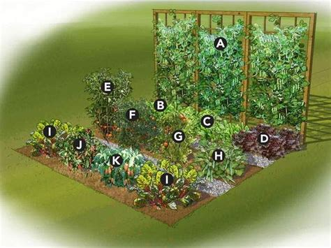 small garden layout 25 best ideas about small vegetable gardens on
