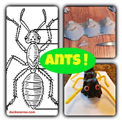 ant craft for ducks n a row preschool ant craft