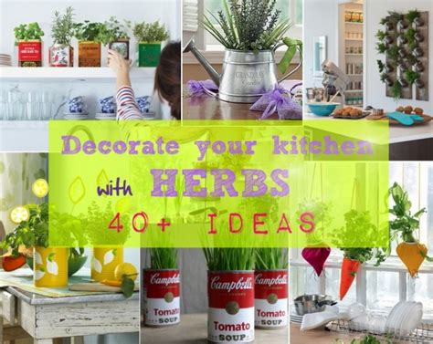 Thyme In Your Kitchen by How To Decorate Your Kitchen With Herbs 40 Tips Home