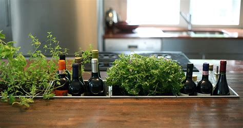 Thyme In Your Kitchen by 18 Creative Ideas To Grow Fresh Herbs Indoors