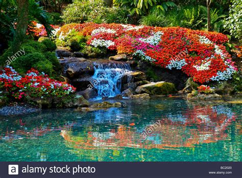 beautiful flower garden photos a beautiful flower garden with a waterfall in tropical