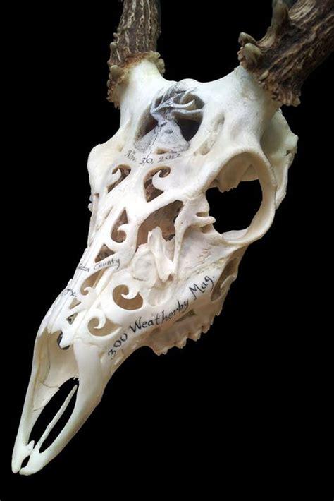 carved bone carved in bone a look inside s o b skulls petersen s