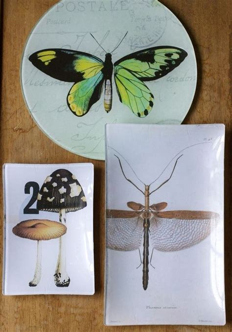 how to make decoupage medium 17 best images about decoupage plates on