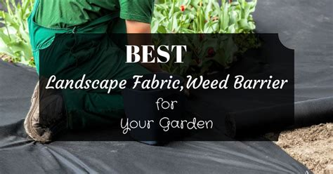 best landscape fabric how to select the best landscape fabric barrier for