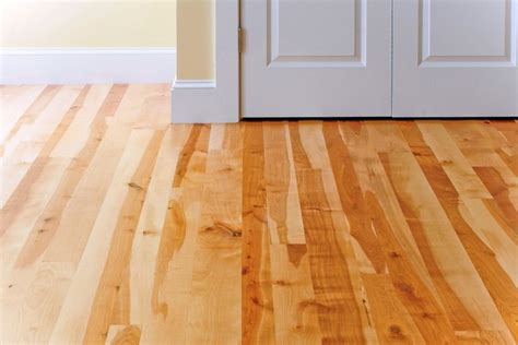 birch wood floors traditional hardwood flooring boston by hull forest products wide