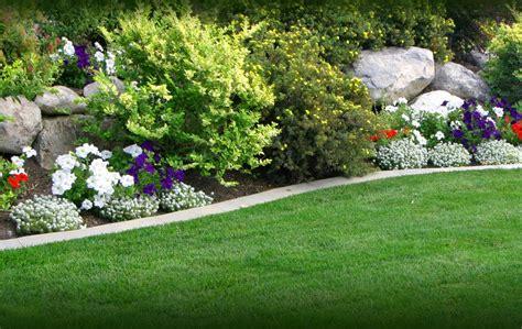 green garden flowers green flowers home garden 8 hd wallpaper