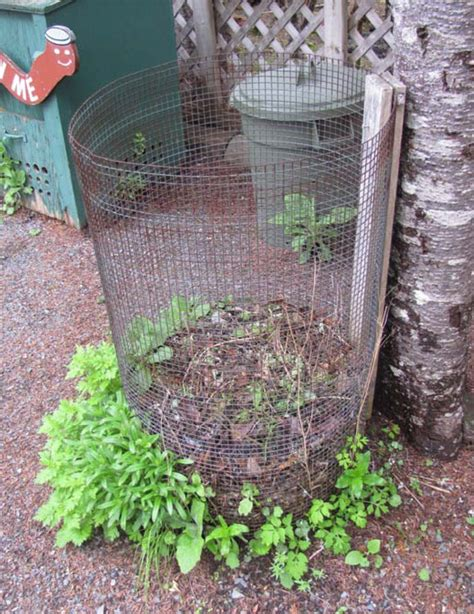 backyard compost bin backyard compost bin patterns choosing a bin food nl