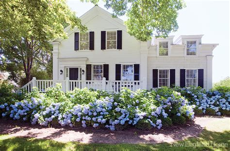What Is A Cape Cod Style House big white houses lauren nelson