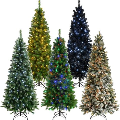 thin trees uk 19 tree 7ft uk 6ft weeping spruce slim