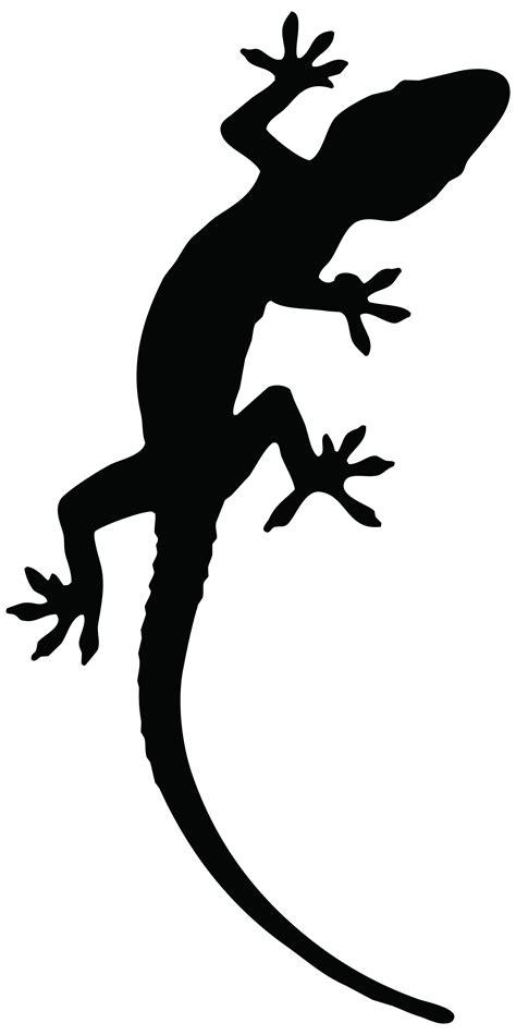 lizard outline clipart best