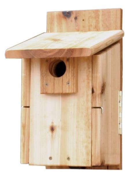 mountain bluebird house plans how to build a bluebird house bluebird nest box plans